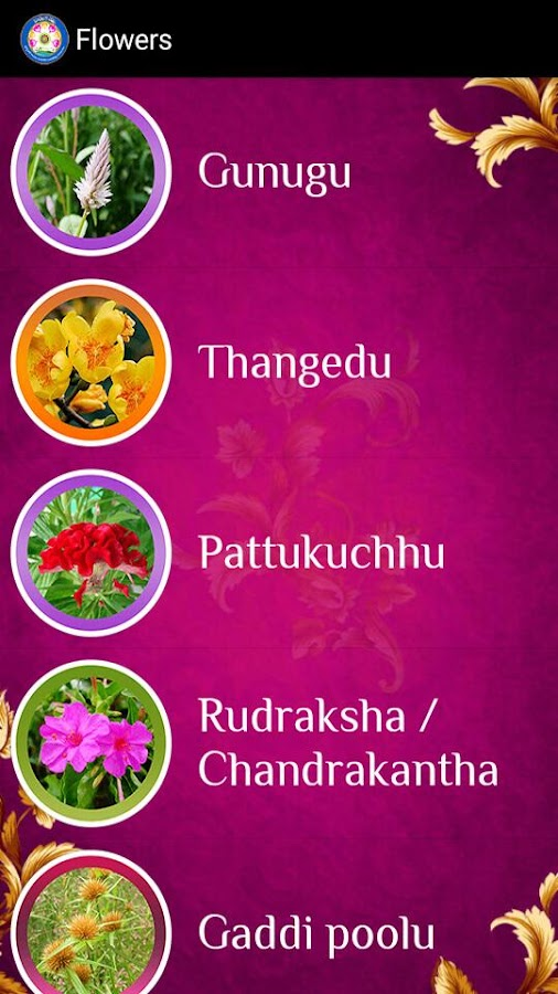 Bathukamma- screenshot