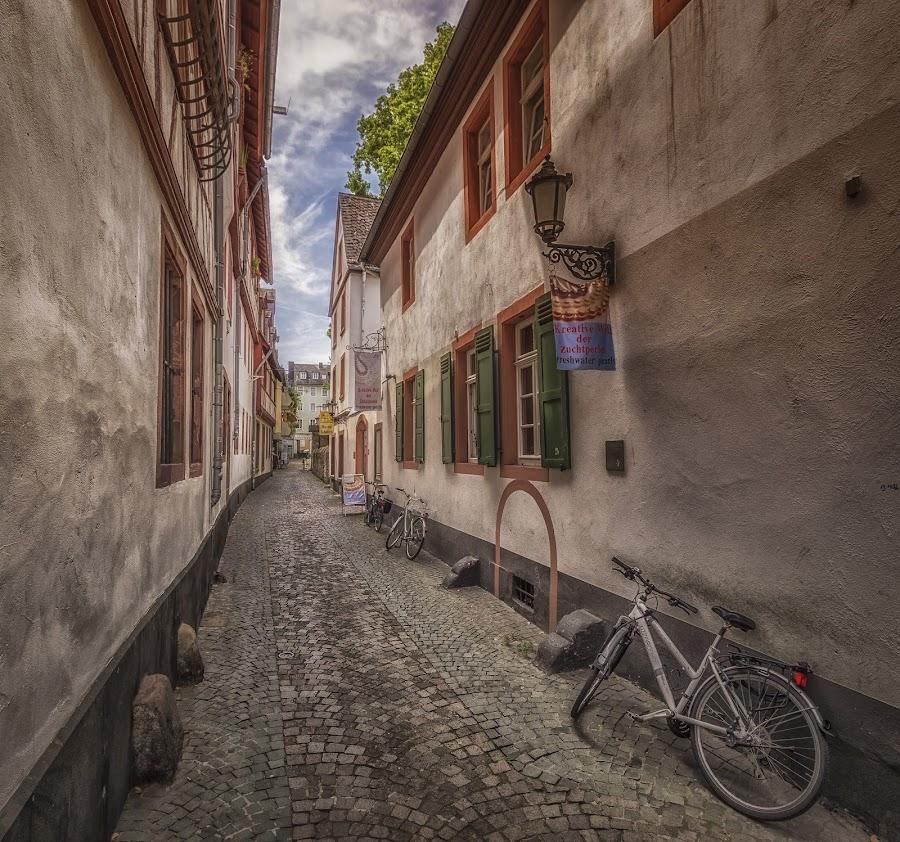Mainz by Ole Steffensen - City,  Street & Park  Street Scenes ( hessen, cobblestones, bike, germany, street scene, mainz, shutters,  )