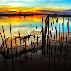 Sunrise on lagoon by Do AmateurPic - Landscapes Sunsets & Sunrises ( lagoon, dawn, hue, viet nam, sunrise, amateurpic, pwcreflections-dq )