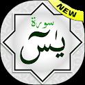 Surah Yaseen / Ya Sin (Quran) icon