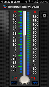 Real Mercury Thermometer 2