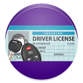 Theory For Driving License