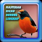 Masteran Kicau Burung Lengkap