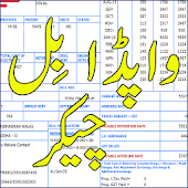 Wapda Bill Checker Pakistan