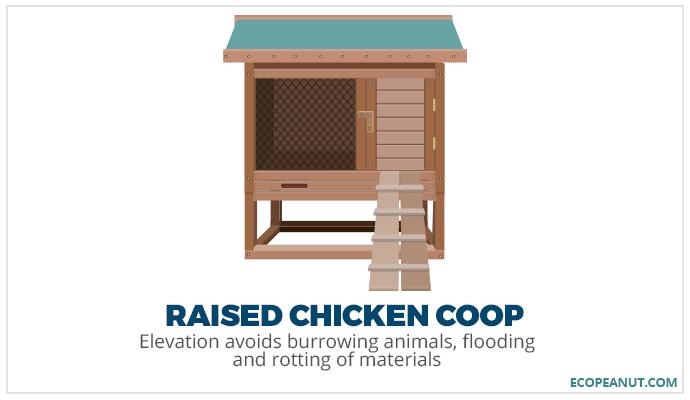 raised chicken coop graphic