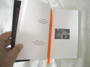 Photo: La edición cuenta con 16 fotografías artísticas de mi autoría, en blanco y negro,  hechas en España y en Bulgaria.  Uno de los haikus a la izquierda:  En el ocaso, mi sombra quitando sombras de malas hierbas.