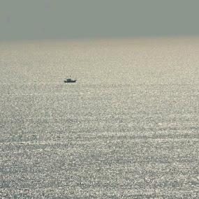 Silver Waters by Gayatri Pimple - Instagram & Mobile Android ( ocean, sea life, waterfall, ocean view, fishing, fishermen, boating, water, water pearls, fisherman, boat )
