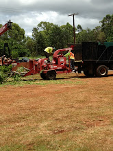 Photo: Some branches went into the tree chipper, and others were loaded onto a truck.