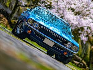 チャレンジャー  1973 Rallyのカスタム事例画像 TamaOnlineさんの2020年04月16日23:27の投稿