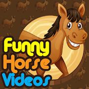 Epic Funny Horses