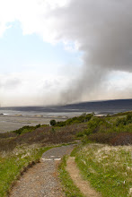 Photo: wind laat de as opstuiven