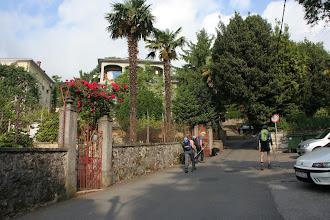Photo: na začetku so nas spremljale palme
