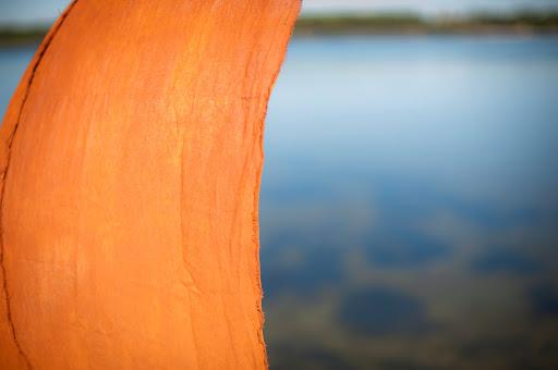 #Pigment #Création murale #decoration #ecologique #inspiration # couleur naturelle #Interior Design Natural Color
