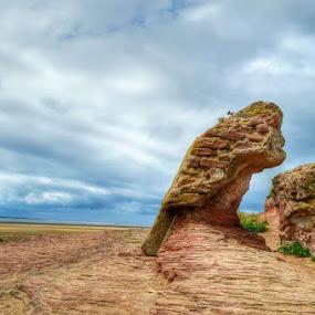 West Kirby by Katarzyna Najderek - Landscapes Beaches ( #beach, #uk #photo #westkirby )