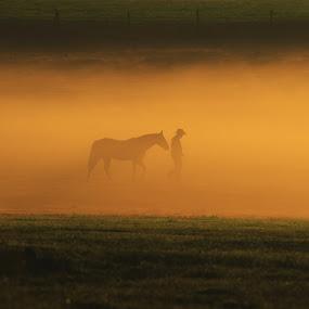 journey by Earl Wyant - Landscapes Prairies, Meadows & Fields ( cowboy, fog, rise, art, horse, south, western, fine, walk, west, sun, mist, land, device, transportation )
