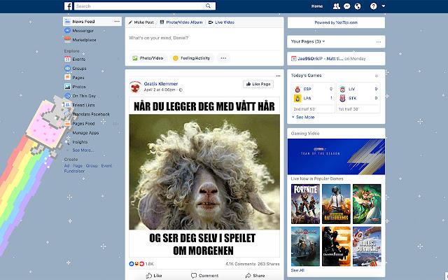 Nyan Cat Theme for Facebook