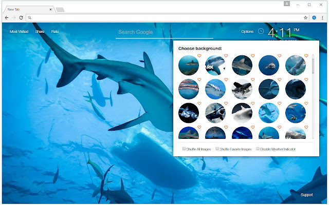 I Love Sharks Install My Themes To Get HD Wallpapers Of Hammerhead Great White Sand Bull Whale Shark In Every New Tab