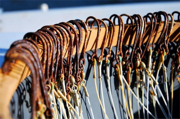 Amo la pesca di gadani's idea