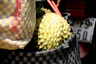 Photo: Year 2 Day 30 -  Durian Fruit