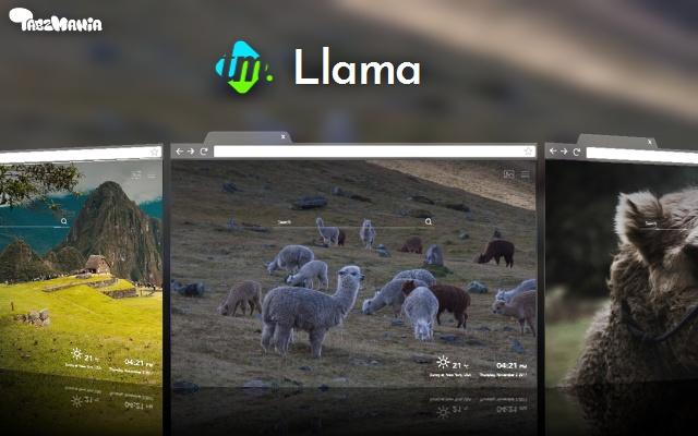 Llamas and Alpacas Backgrounds & New Tab
