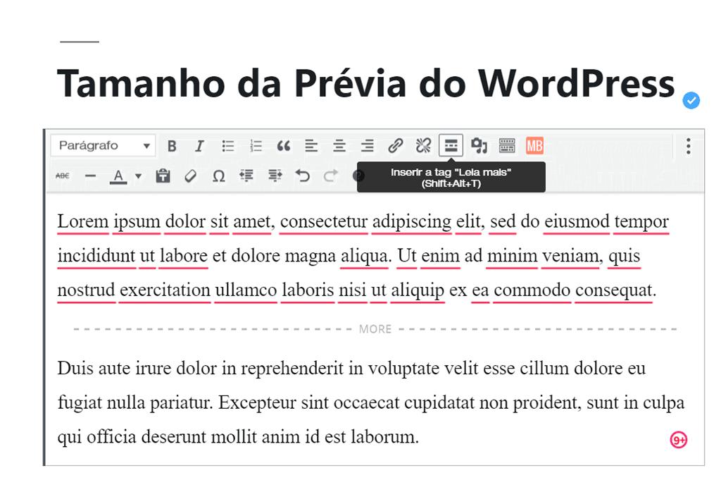 exemplo de Leia Mais sendo inserido em publicação do WordPress