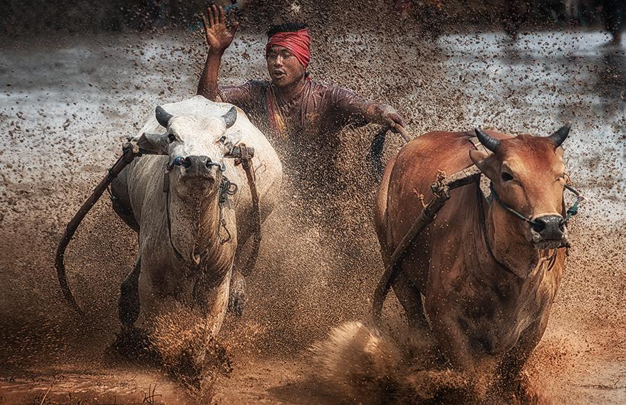 by German Kartasasmita - Sports & Fitness Rodeo/Bull Riding