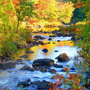 P16-52 RA New Hampshire Autumn River-PIXOTO.jpg