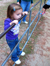 Photo: It's cold and flu season, you might as well lick the monkey bars.