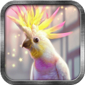 Pink Parrot Live Wallpaper icon