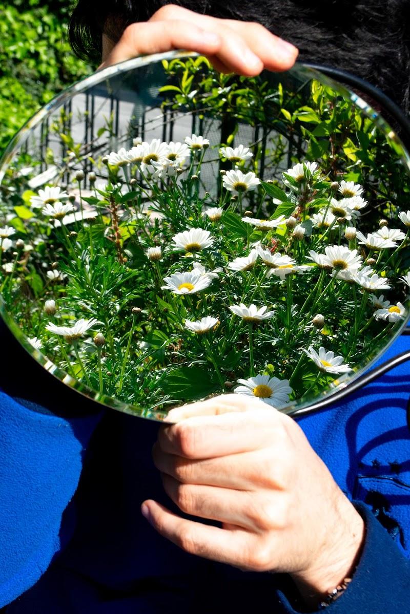 aria in giardino (ai tempi del virus) di Zerosedici
