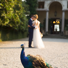 Wedding photographer Anastasiya Nikitina (anikitina). Photo of 06.11.2017