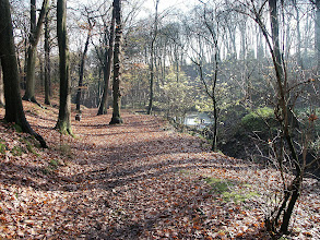 Photo: Path above the Pond in Northcliffe Wood Shipley
