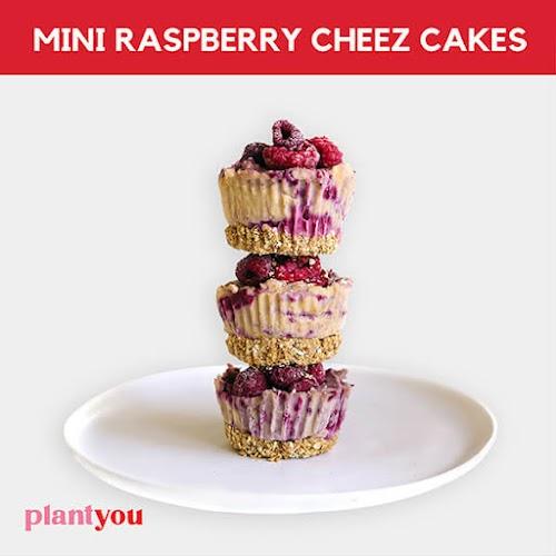 Mini Raspberry Cheez Cakes