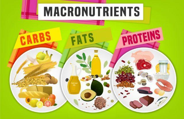 macronutrient food groups - carbs, fats and proteins