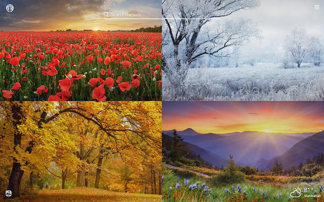 Four Seasons HD Wallpapers New Tab Theme