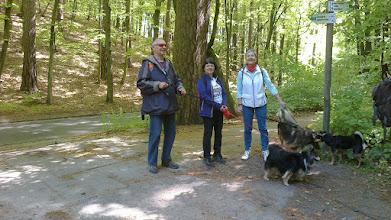 Photo: Tradycyjnie wędrują z nami psy ze schroniska. Jak widać opiekunowie są bardzo szczęśliwi... psy też.