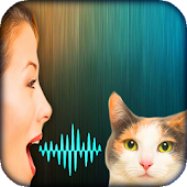Cat Voice Translator Simulator Android APK Download Free By Asmy.Team