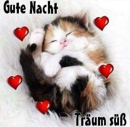 Liebe gute nacht grüße für whatsapp