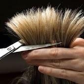 وصفات لعلاج تقصف الشعر
