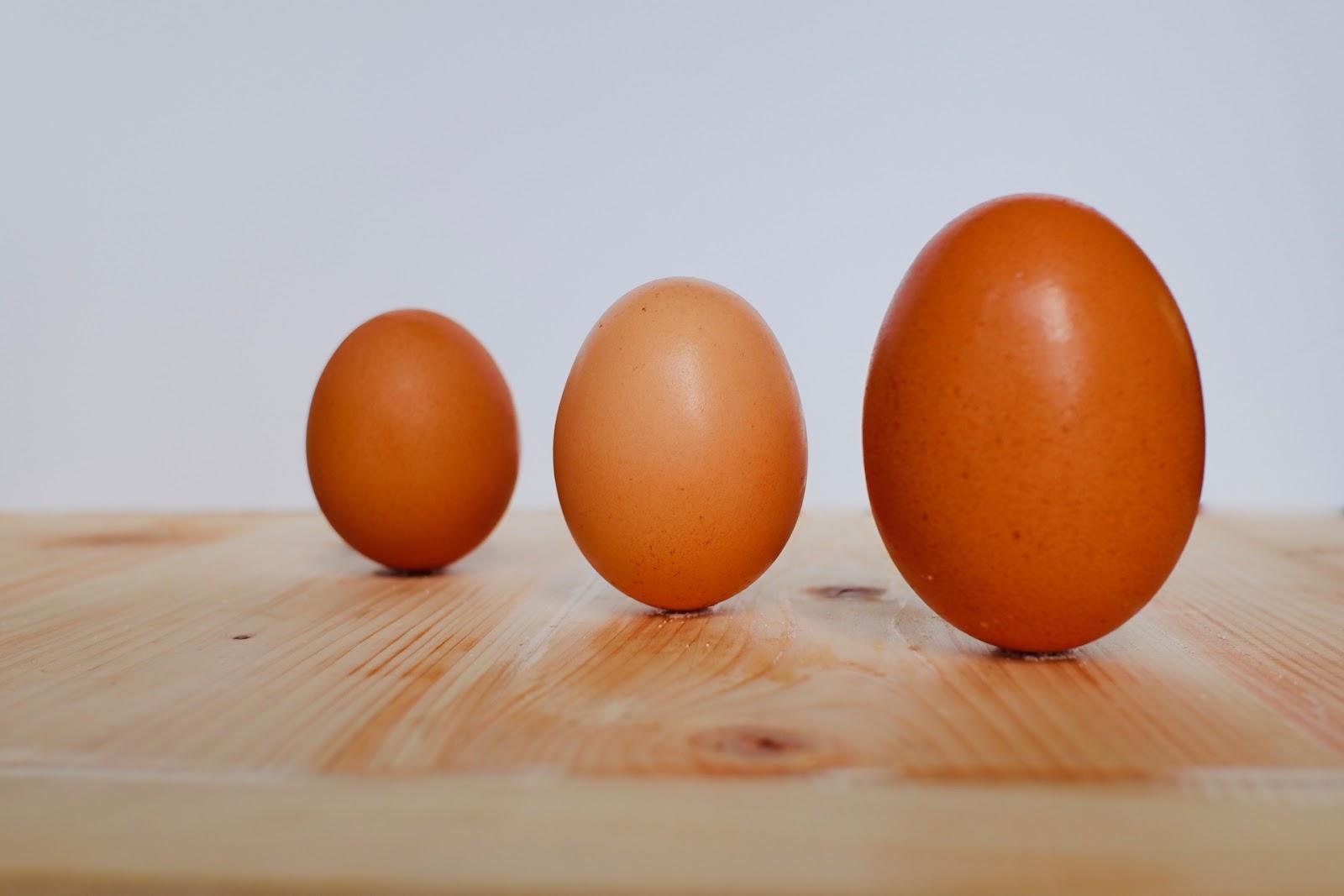 「二黄卵」の見分け方