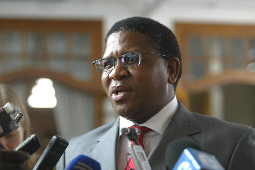 Fikile Mbalula. File Photo