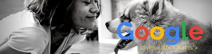alt=を書くと、GoogleのSEO評価も上がるらしい