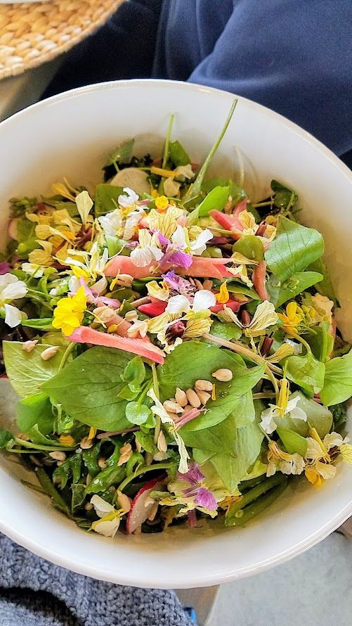 Our Secret Supper Leap Dinner, Tender leaves and shoots with Vermont Creamery feta, Easter Egg radishes, sugar snap peas, pic