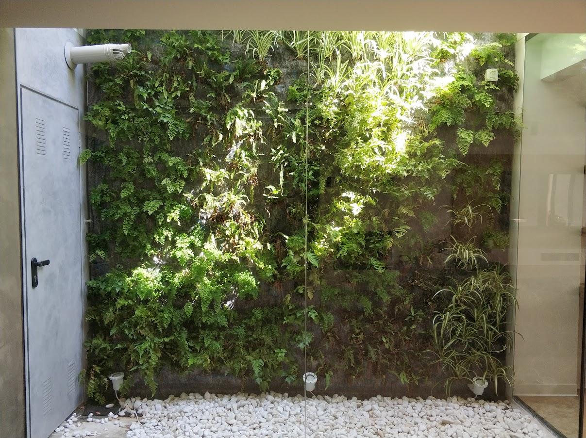 jardín vertical realizado en San Juan de Alicante