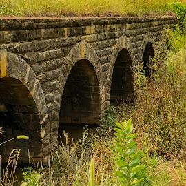 5 tier bridge  by Jeff Brown - Buildings & Architecture Bridges & Suspended Structures ( hisotry, older, bridge, stone )
