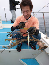 Photo: ・・・サンゴ。 「魚をお願いします!」