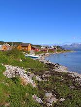 Photo: henge i fjæra