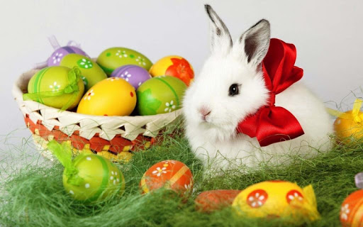 Заяц и Яйца. Пазлы скачать на планшет Андроид