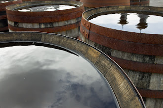 Photo: Cask Reflections