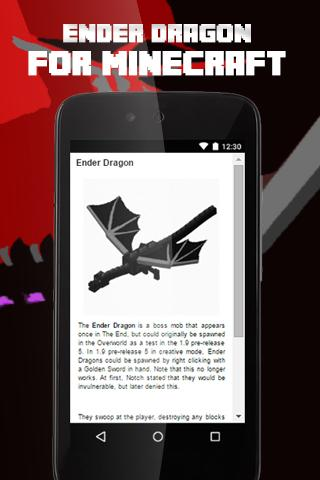Ender Dragon For Mc Guide